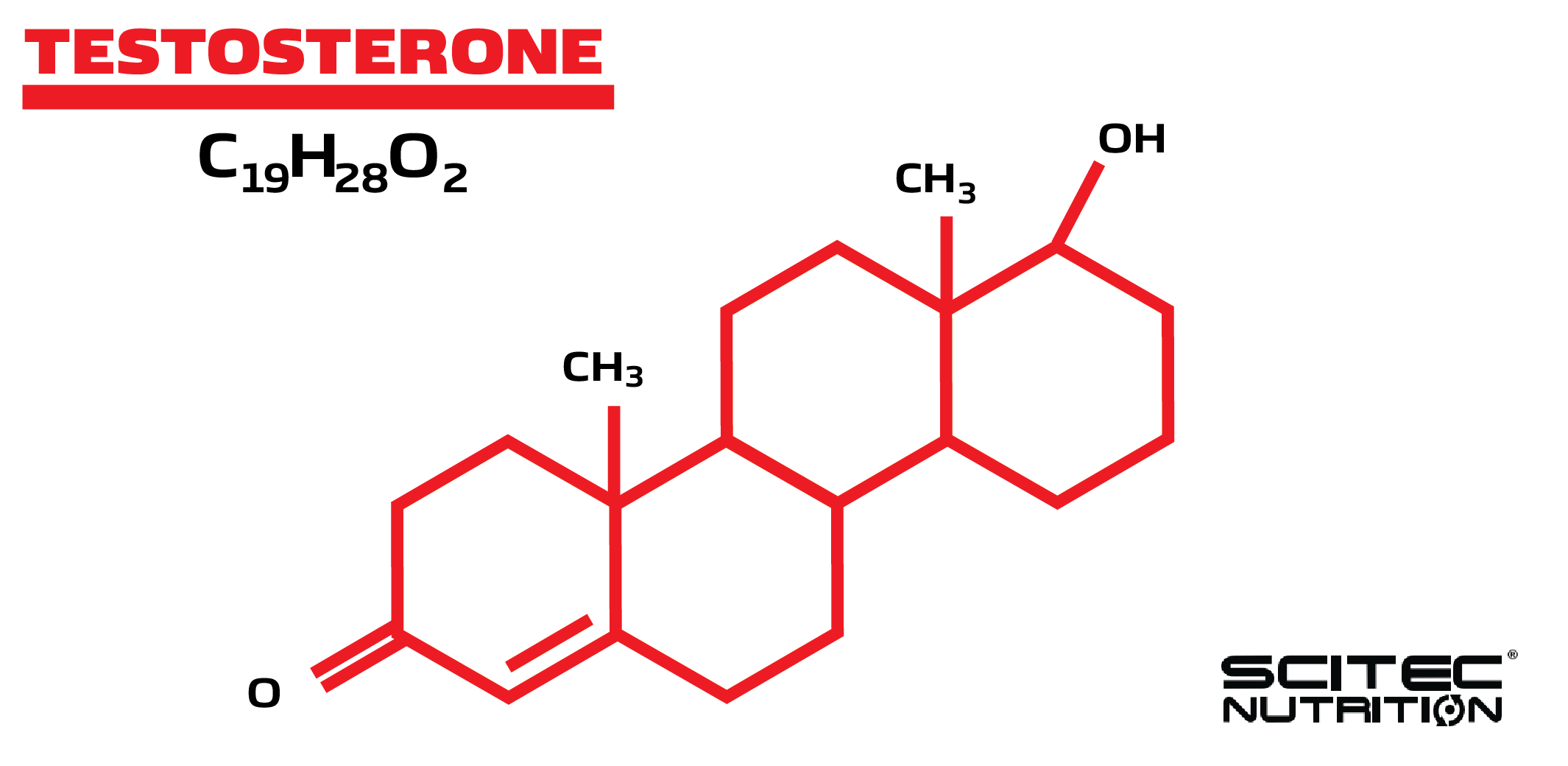 graphic showing chemical structure of testosterone