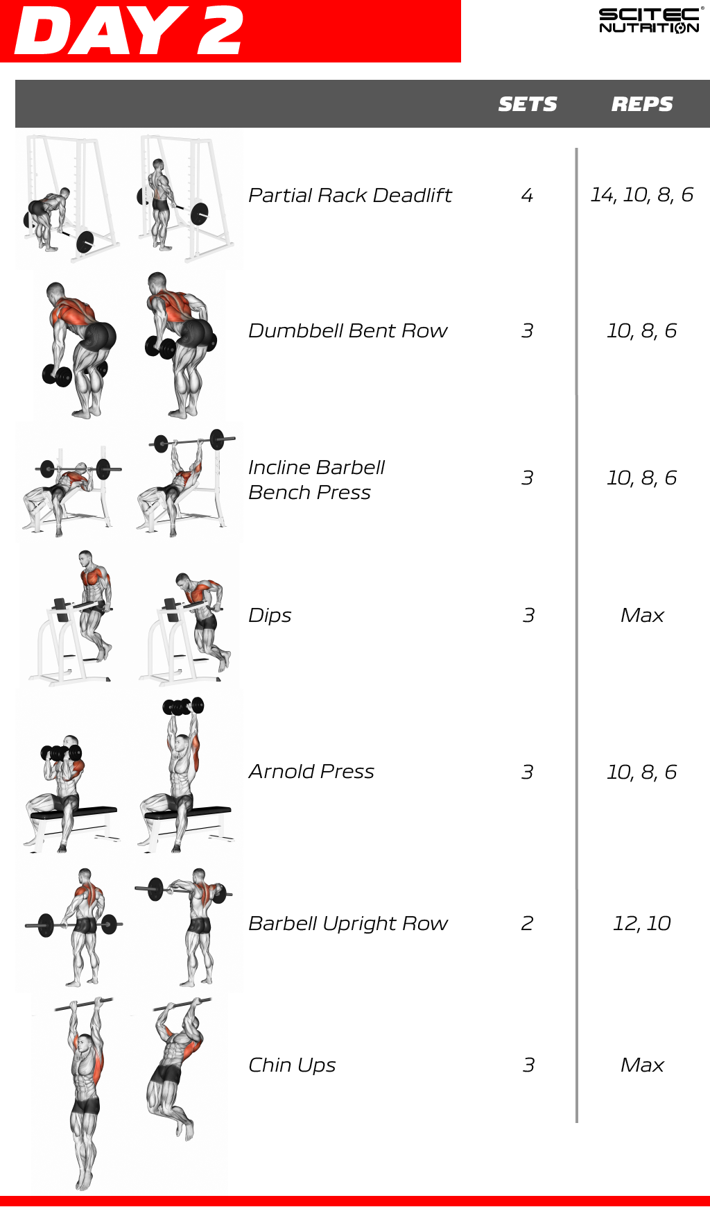 Upper Body Workout 2