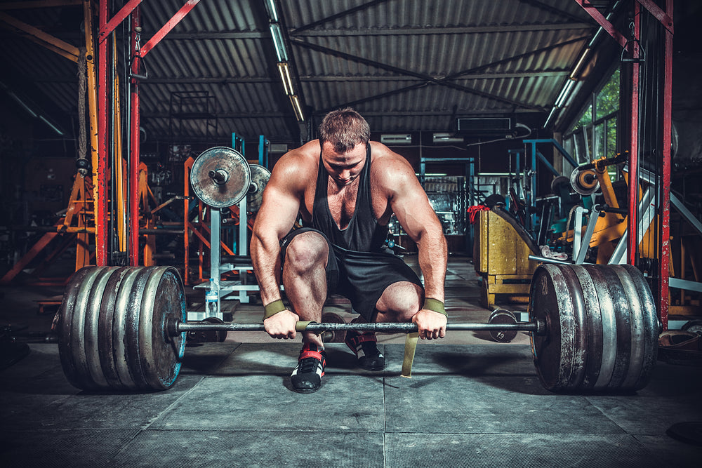 Fit man in gym grabbing barbell, getting ready to perform a deadlift