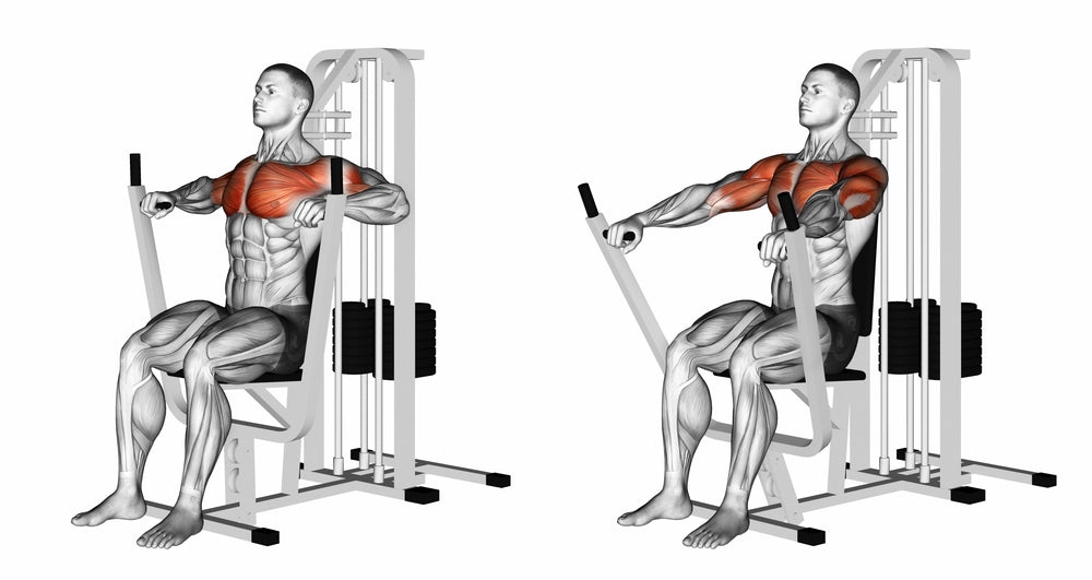 Graphic illustration of muscles used while using a chest press machine