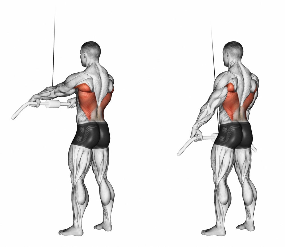 3D Illustration of man performing Straight Arm Pulldown