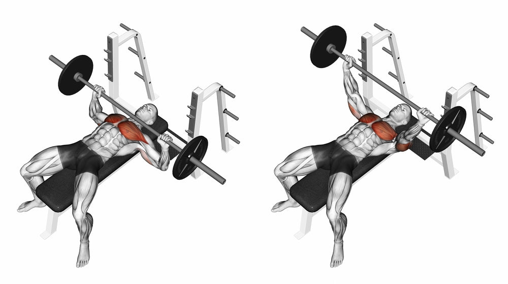 3D illustration of man performing bench press with barbell