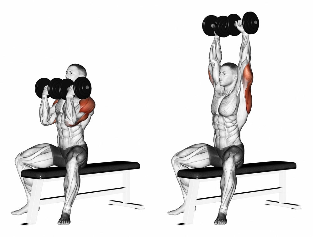 3D illustration of man performing arnold dumbbell press and front deltoid muscles being used