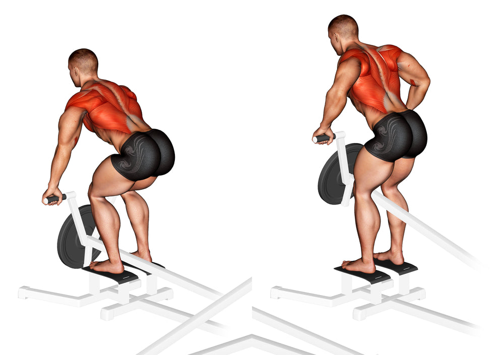 3D Illustration of man performing stand up t-bar row