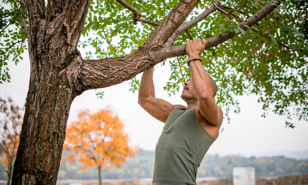 Man performing chin up on tree branches