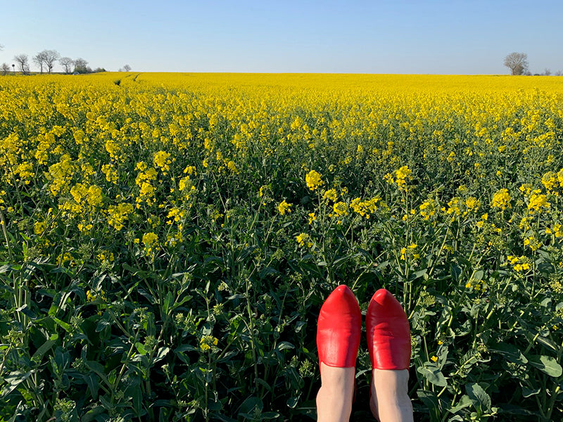 Slip on red ladies mules in a meadow of yellow flowers