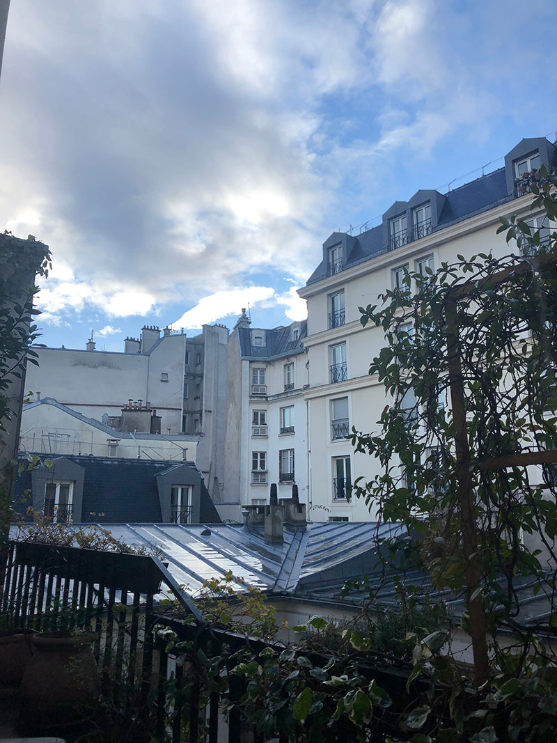 Rooftops of Paris in Le Marais