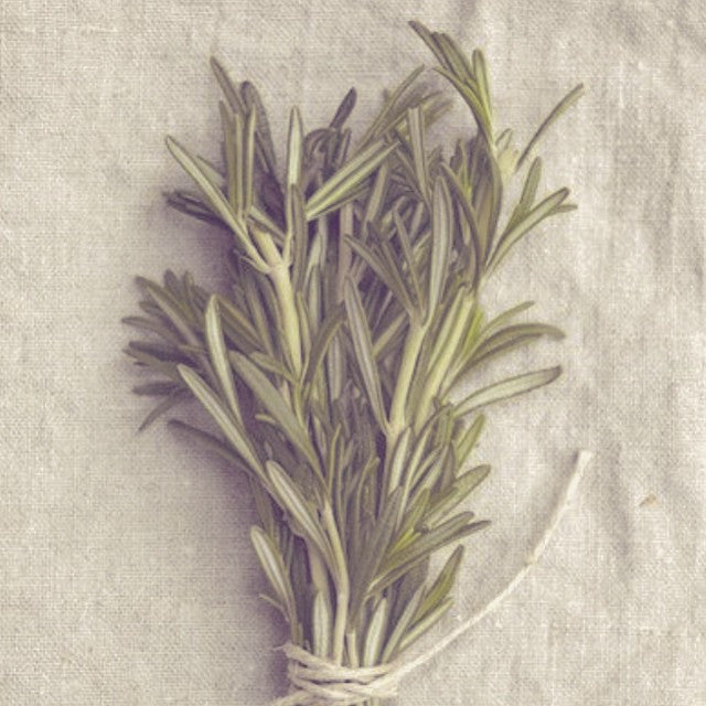 FRESH ROSEMARY #INGREDIENTS #ORGANIC #GREEN #BEAUTY #NATURAL #SKINCARE #BEAUTYBLOGGER #ORGANICBEAUTY #ORGANICSKINCARE #NYC