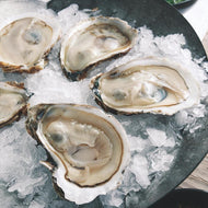 Oysters - In the shell