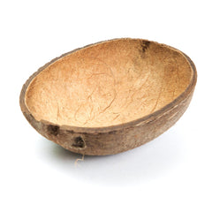 Natural Coconut 1/2 Shell