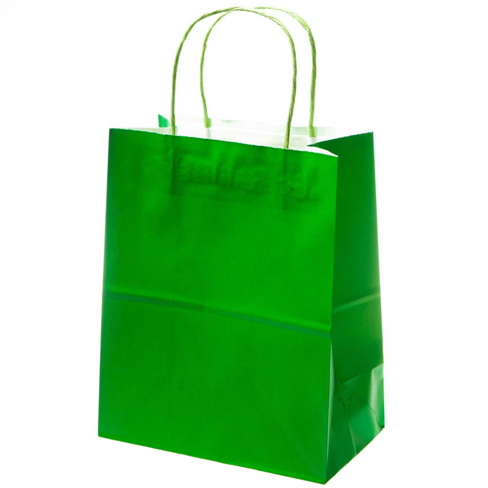 Medium Green Kraft Gift Bags