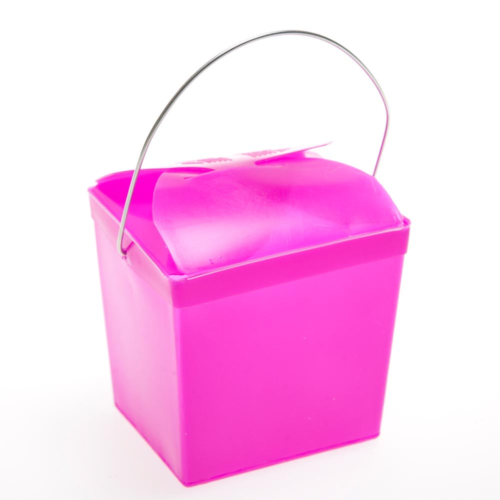 Hot Pink Plastic Take Out Boxes