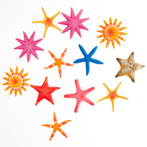 Colorful Starfish Assortment