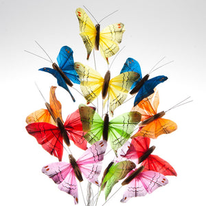 "3"" Feather Colorful Butterfly Decorations"