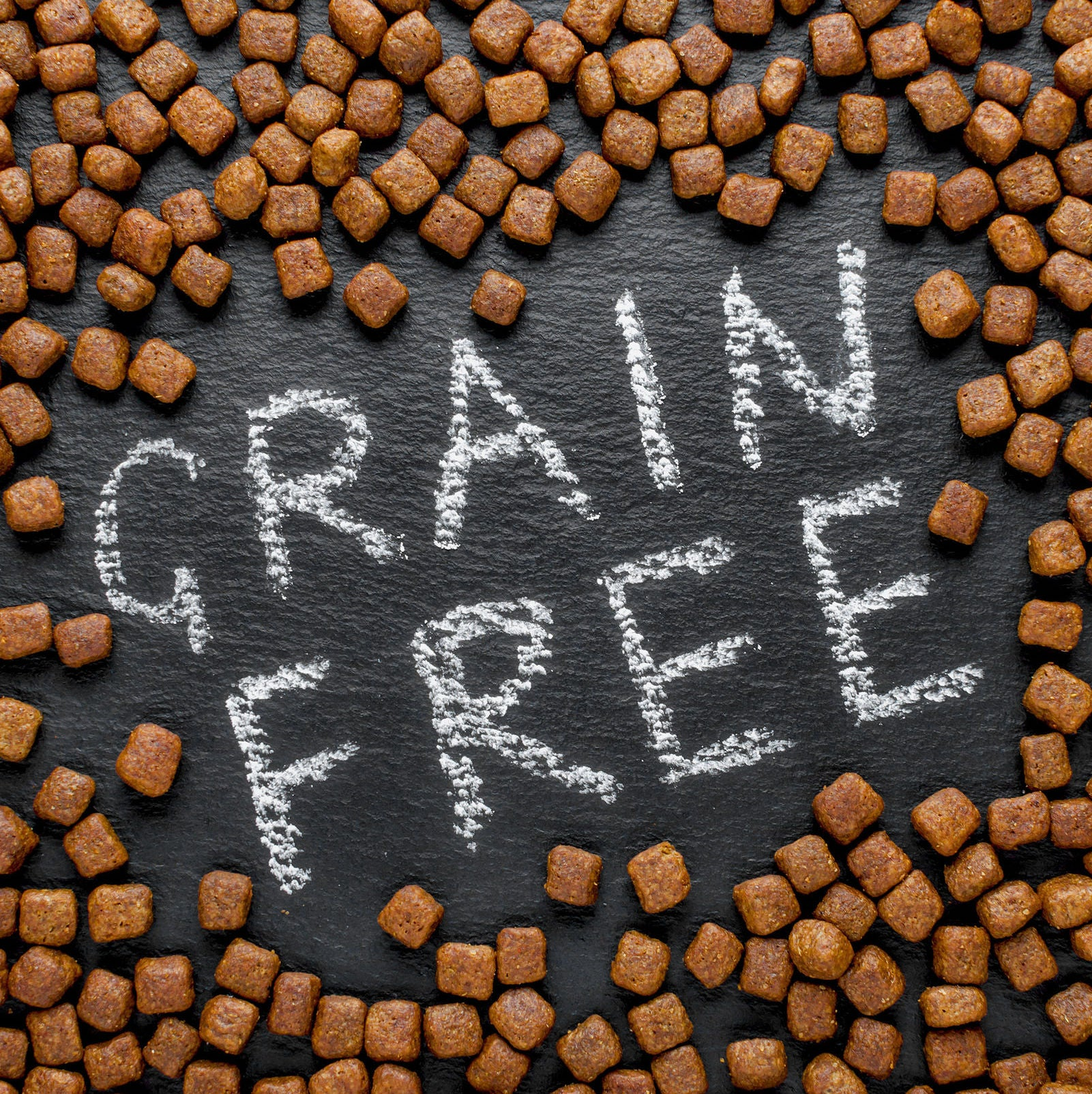 Are Grains Bad For Dogs? [Solved 2020]