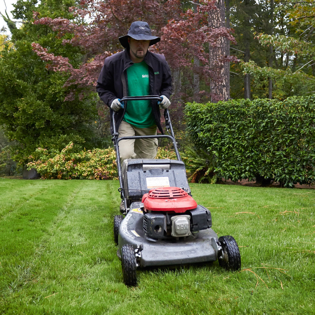 Continue to mow and edge.