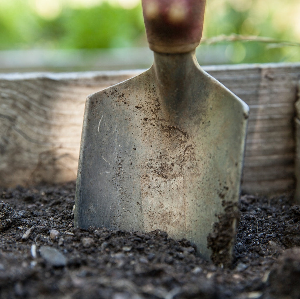 Continue preparing your garden soil