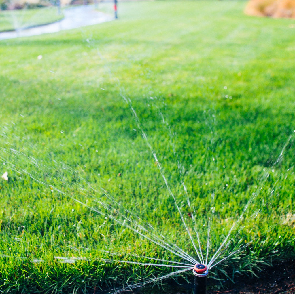 Give your lawn the correct amount of water