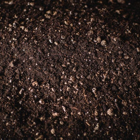 Garden Valley Organics Pro-Plus Soil