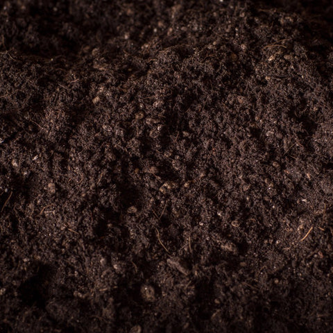 Natural & Organic Potting Soil with Worm Castings (Certified for Organic Use)