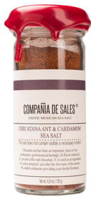 chicatana ant salt