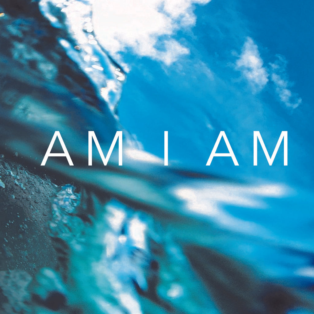 Ann Marie Horan 'AM I AM'
