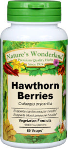 Hawthorn Berry - 540 mg - 100 Capsules