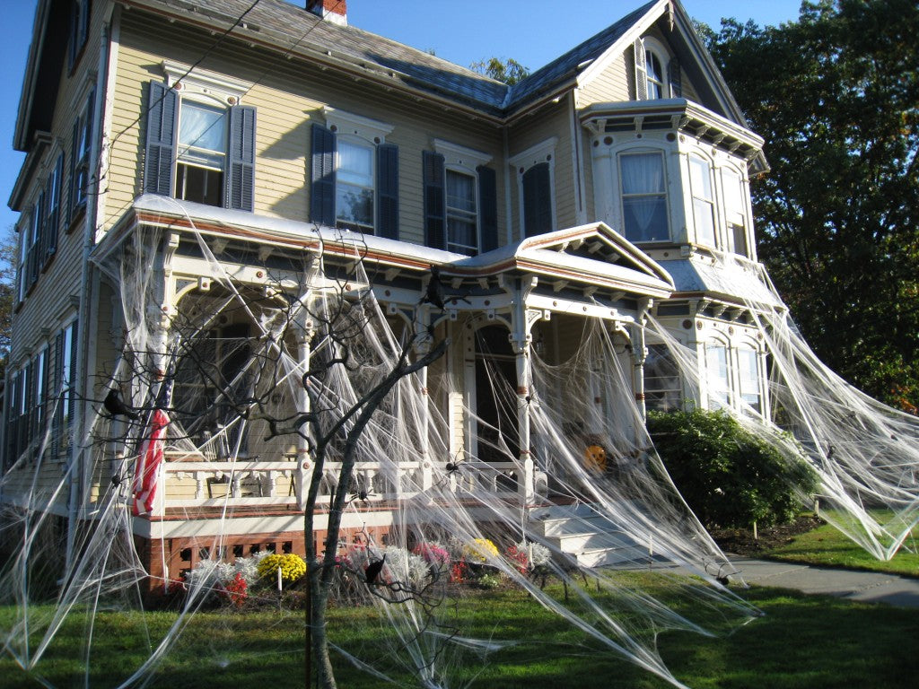 Super Stretch Spider Web For Indoor/Outdoor Use