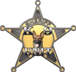 5 Point Sheriff Star K9 Unit Gold