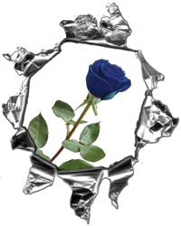 Mini Ripped Torn Metal Decal with Blue Rose
