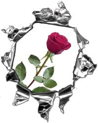 Mini Ripped Torn Metal Decal with Pink Rose