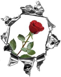 Mini Ripped Torn Metal Decal with Red Rose
