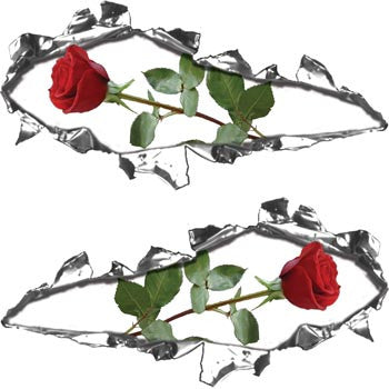 Ripped / Torn Metal Look Decals Rose