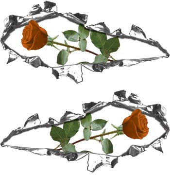 Ripped / Torn Metal Look Decals with Orange Rose