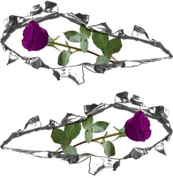 Ripped / Torn Metal Look Decals with Purple Rose