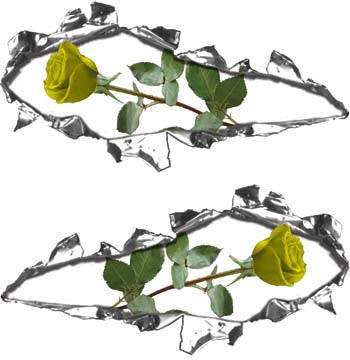 Ripped / Torn Metal Look Decals with Yellow Rose