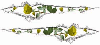 Ripped / Torn Metal Look Decals with Yellow Roses