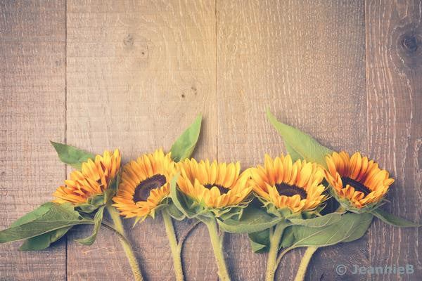 Sunflower on Barnboard - Stunning Photo Chalkboards