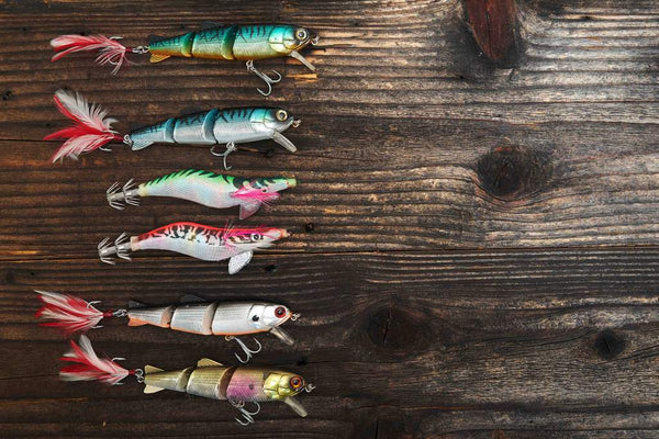 Fishing Lures - Stunning Photo Chalkboards