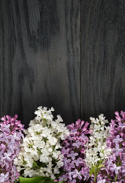 Lilac Vertical - Stunning Photo Chalkboards