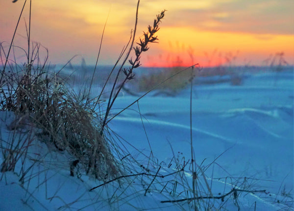 Grass_Snow_Sunset Port Stanley - Stunning Photo Chalkboards