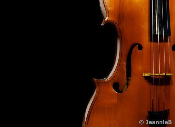 Violin - Stunning Photo Chalkboards