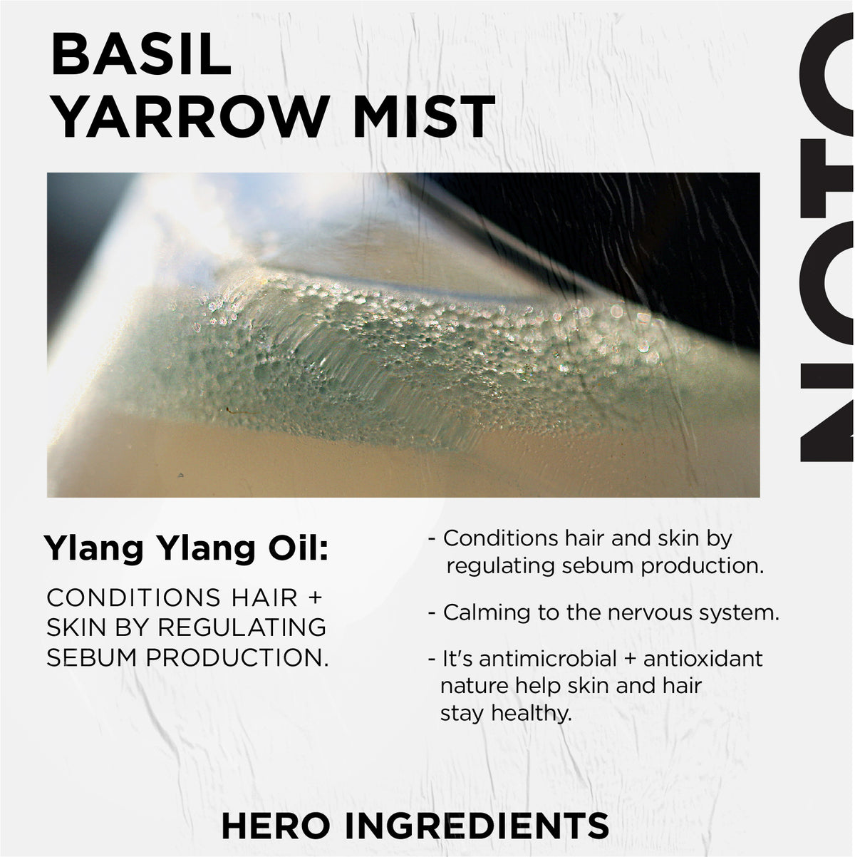 INGREDIENT FOCUS : Basil Yarrow Mist // YLANG YLANG