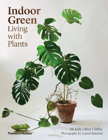 Bree Claffey Indoor green: Living with plants book