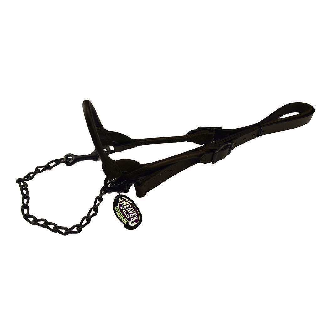 Weaver Leather WEAVER BOMBSHELL SHOW HALTER, Feeders Grain and Supply Inc.