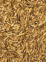 Feeders Grain and Supply Inc.  Annual Ryegrass Seed, Feeders Grain and Supply Inc.