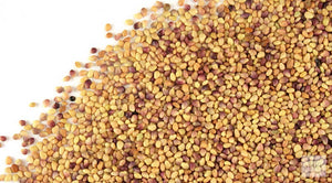Feeders Grain and Supply Inc. Red Clover Seed, Feeders Grain and Supply Inc.