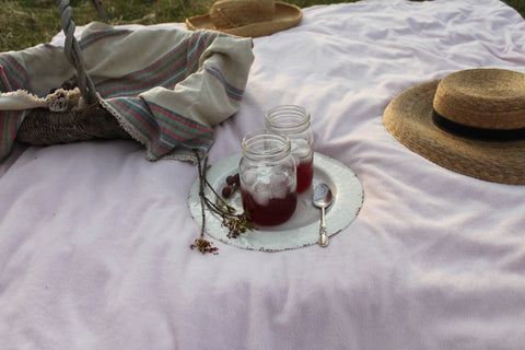 pink picnic blanket iced drinks nature
