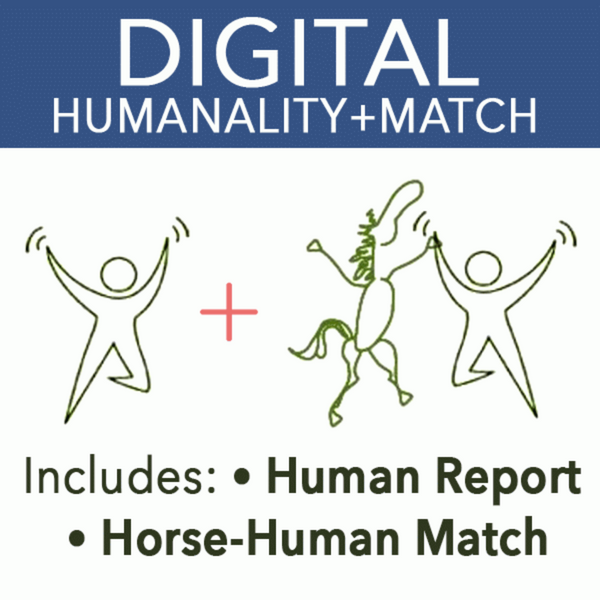 Humanality Match Report Digital