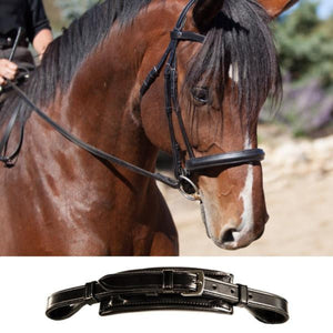 English Dressage Bridle